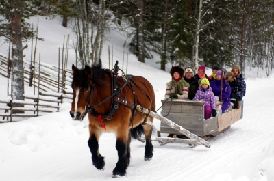TAKE A HORSE SLEDGE TOUR WITH FRIENDS AND FAMILY. LINDVALLENS FÄBOD NEXT TO SKI LODGE. ONLY 50 SEK / PERSON. 020-47 25 36