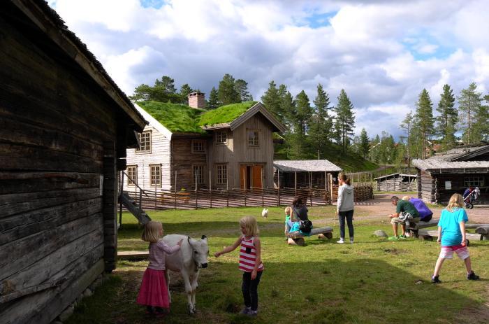 ponnyridning, häst & vagn, sommar, sommaröppet