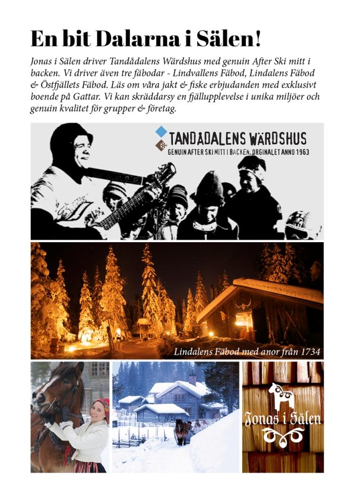 Dalarna, Jonas i Sälen, Sälenfjällen, Scandinavian Mountains