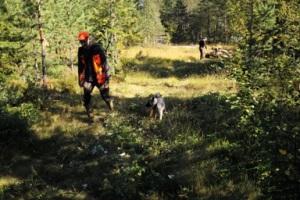 Östfjällets Fäbod, jakt, hunt, hunting, Jonas Hunting, Jonas i Sälen Game Fair 2016