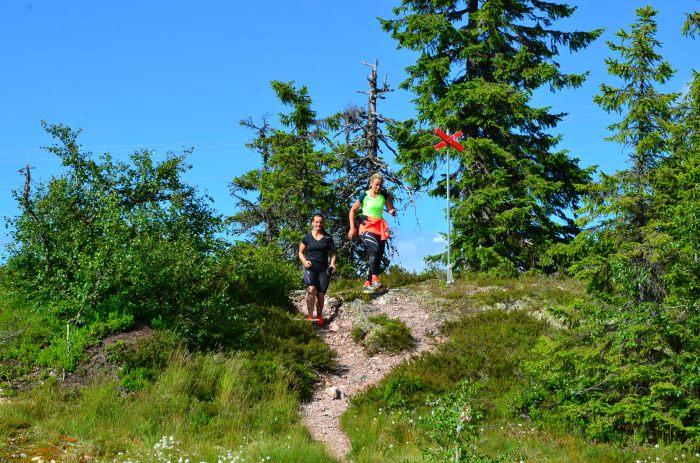 trail, trail running, löpning, fjällöpning, trail running sweden, outdoor mässa, löpning sälen, träningsläger sälen, Jonas i Sälen Game Fair, mässa sälen, kalender sälen