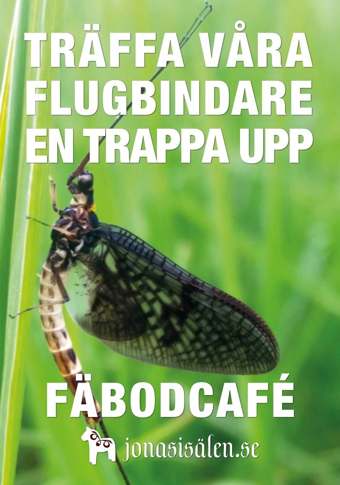 flugbindning, flugbindare, fiskemässa sälen, torrfluga, Jonas i Sälen Game Fair, Lindvallens Fäbod, fly fishing, fly tying, fiska i sälen, fiske