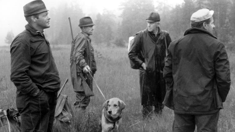 hund, hundar, jakthund, jämthund, älghund, basset, stövare, hamiltonstövare, jaga med hund, jaktmässa, jaktmässa sälen, draghundar, hundprov, hundprov på björn, hundprov på älg, flatcoated retriever, dog, Vorsthe, fågelhund, Sälen, gamefair sälen, hundmässa, träning, Jonas i Sälen Game Fair, Paw of Sweden, Follkaktionen, rovdjur, rovdjurspolitik, jakt